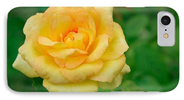 Beautiful Yellow Rose Phone Case by Atiketta Sangasaeng