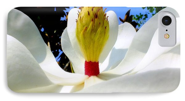 Bed Of Magnolia Phone Case by Karen Wiles