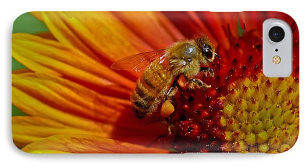 Bee 12 Phone Case by Mitch Shindelbower