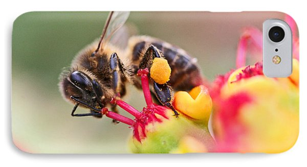 Bee At Work Phone Case by Ralf Kaiser