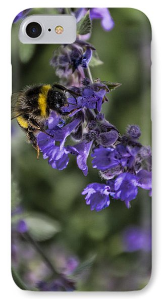 IPhone Case featuring the photograph Bee by David Gleeson