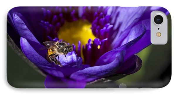 Bee Hug IPhone Case by Priya Ghose