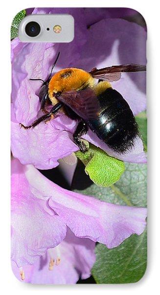 Bee On Azalea Bloom Phone Case by Lisa Phillips