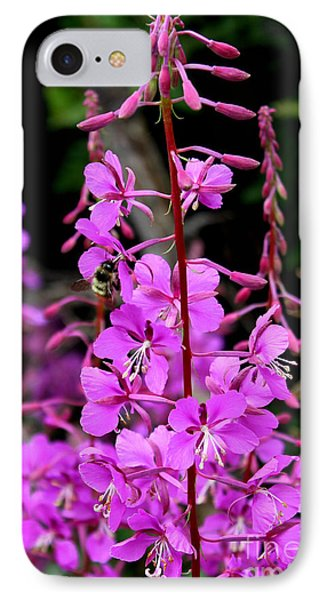 IPhone Case featuring the photograph Bee On Fireweed In Alaska by Kathy  White