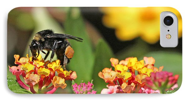 IPhone Case featuring the photograph Bee On Lantana Flower by Luana K Perez