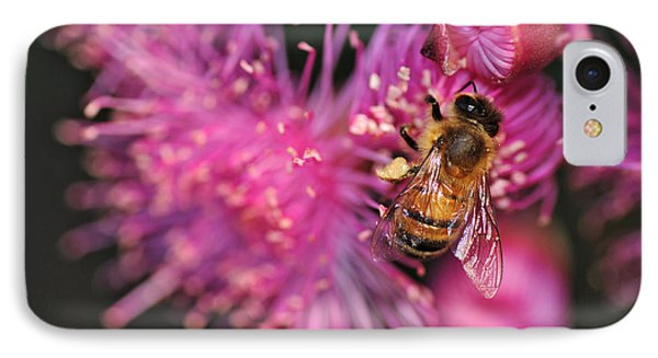 Bee On Lollypop Blossom Phone Case by Kaye Menner