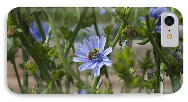 Bee On Romaine Flower Phone Case by Donna Munro