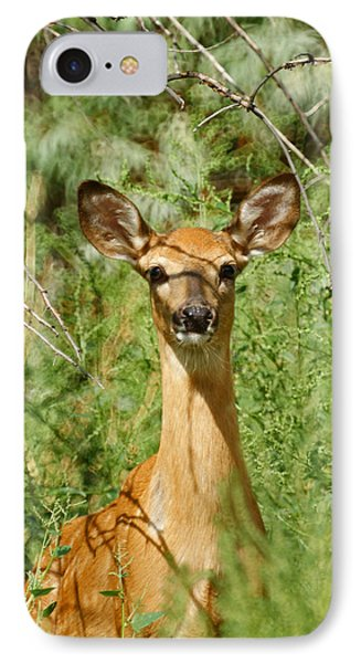 Being Watched Phone Case by Ernie Echols