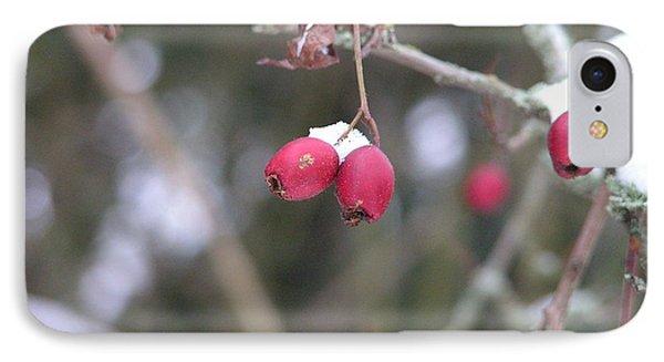 Berries In Winter IPhone Case