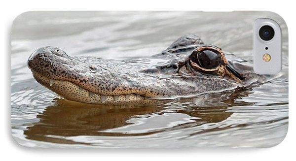 Big Eyes Baby Gator Phone Case by Carol Groenen