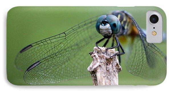 Big Eyes Blue Dragonfly Phone Case by Sabrina L Ryan