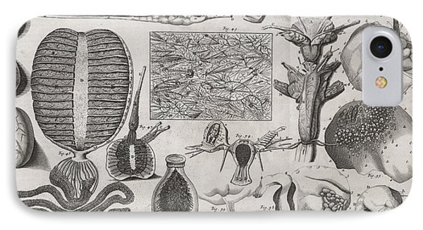 Biological Illustrations, 17th Century Phone Case by Middle Temple Library