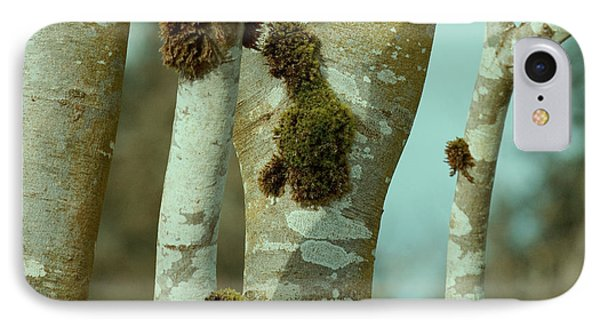 Tree iPhone 7 Case - Birch by Bonnie Bruno