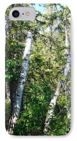 IPhone Case featuring the photograph Birch Trees by Jim Sauchyn