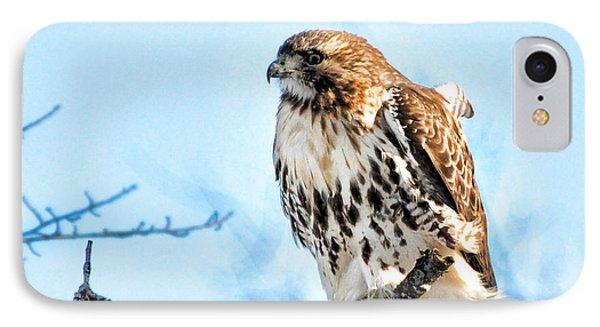 Bird - Red Tail Hawk - Endangered Animal Phone Case by Paul Ward