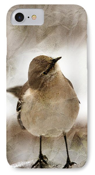 Bird In A Bag Phone Case by Skip Willits