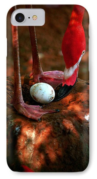 IPhone Case featuring the photograph Bird Is The Word by Lon Casler Bixby