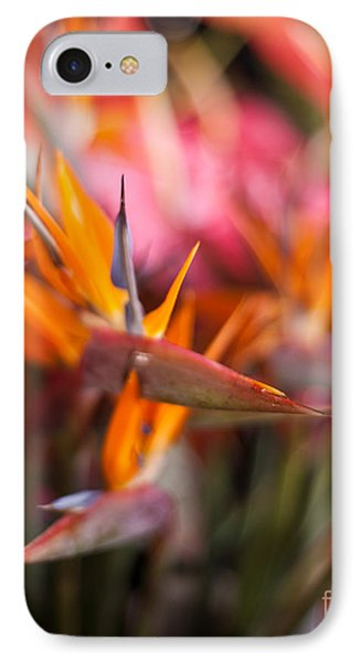 Bird Of Paradise Amongst Friends IPhone Case by Mike Reid