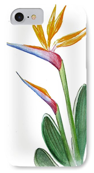 Bird Of Paradise Card IPhone Case by Irina Sztukowski