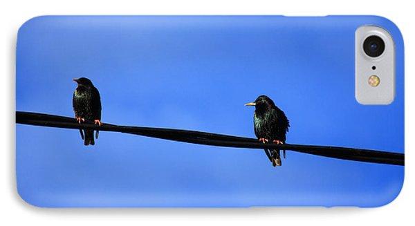 Bird On A Wire IPhone Case by Aidan Moran