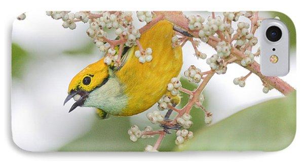 Bird With Berry IPhone Case
