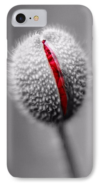 Birth Of A Poppy IPhone Case by Tracie Kaska