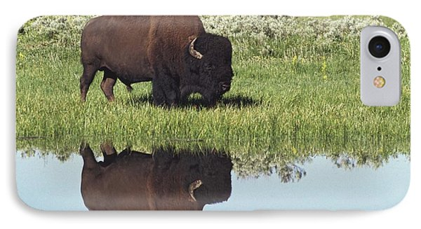 Bison Bison Bison On Grassy Meadow With Phone Case by David Ponton
