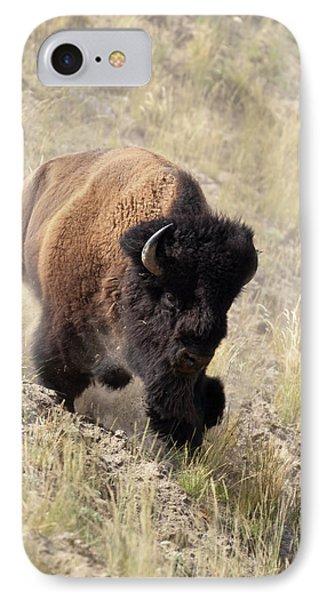 Bison Bull IPhone Case by D Robert Franz
