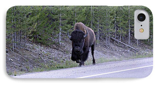 Bison On Road IPhone Case