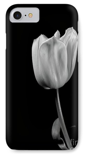 Black And White Tulip IPhone Case by Dariusz Gudowicz