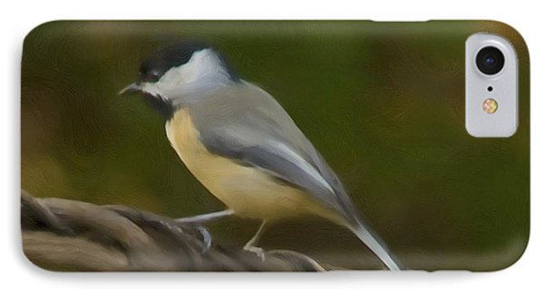Black-capped Chickadee IPhone Case by Steven Richardson