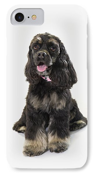 Black Cocker Spaniel With Golden Boots Phone Case by Corey Hochachka