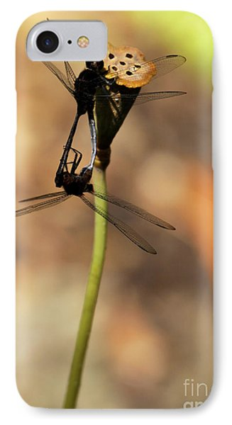 Black Dragonfly Love IPhone Case by Sabrina L Ryan