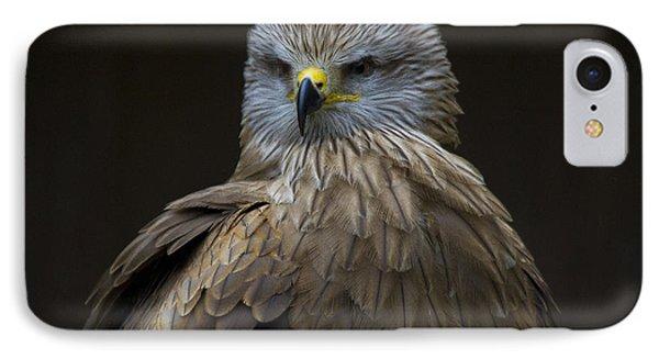 Black Kite 1 Phone Case by Heiko Koehrer-Wagner