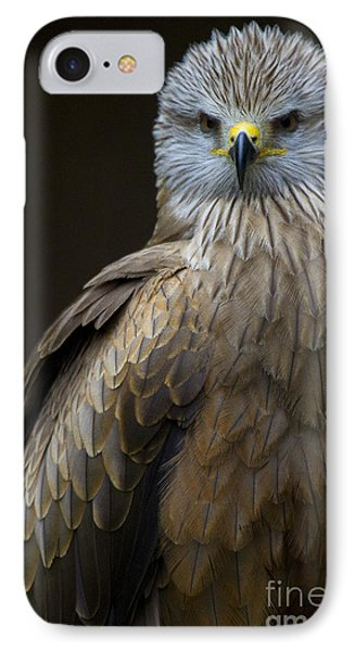 Black Kite 2 Phone Case by Heiko Koehrer-Wagner