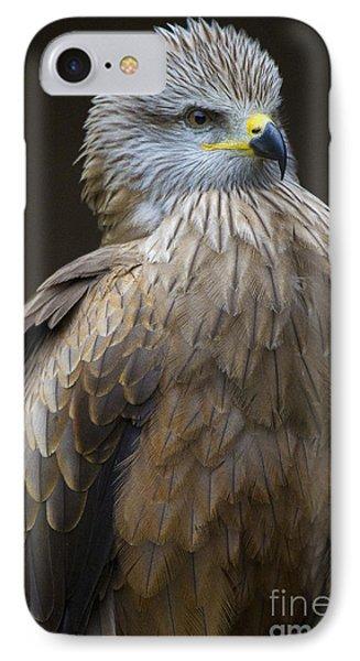 Black Kite 4 Phone Case by Heiko Koehrer-Wagner