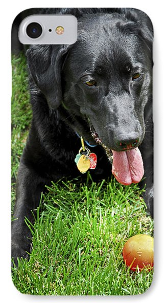 Black Lab Dog With A Ball Phone Case by Elena Elisseeva