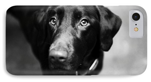 Black Labrador  IPhone Case by Sumit Mehndiratta