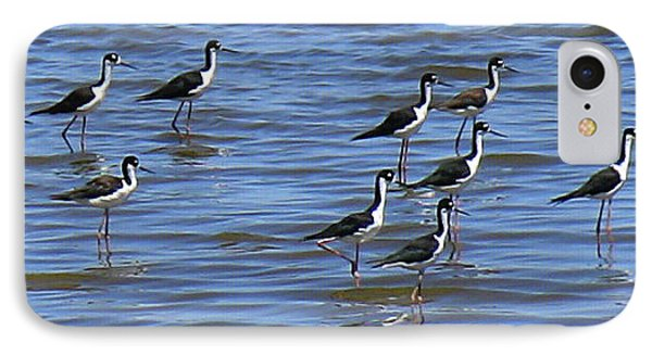 IPhone Case featuring the photograph Black-neck Stilt Dressed In Their Best by Roena King