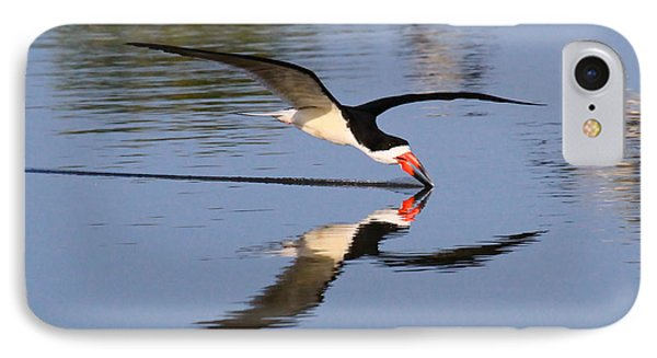 Black Skimmer IPhone Case by Paul Marto