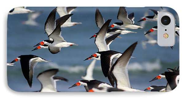 Black Skimmers Flock Phone Case by Clarence Holmes