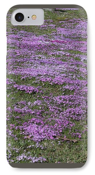 Blank Colonial Tombstone Amidst Graveyard Phlox IPhone Case