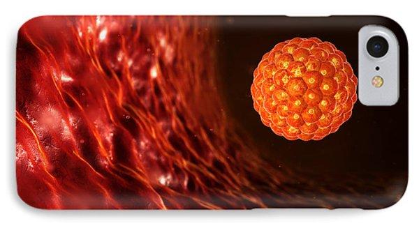 Blastocyst In The Uterus Phone Case by David Mack