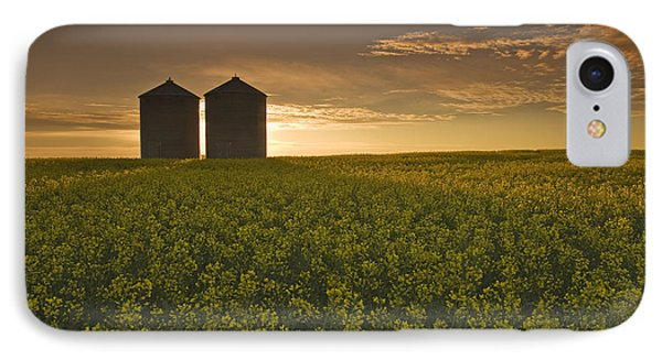 Bloom Stage Canola Field With Grain Phone Case by Dave Reede