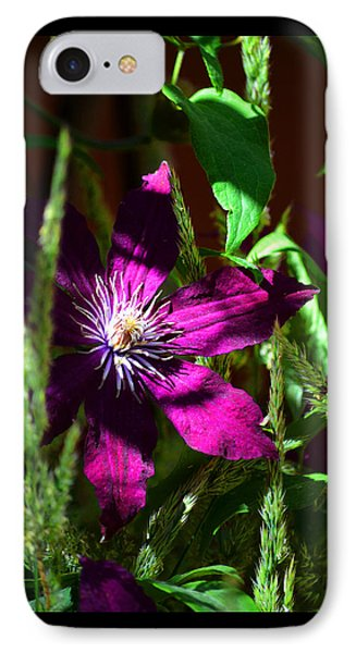 IPhone Case featuring the photograph Blooming Clematis by Susanne Still