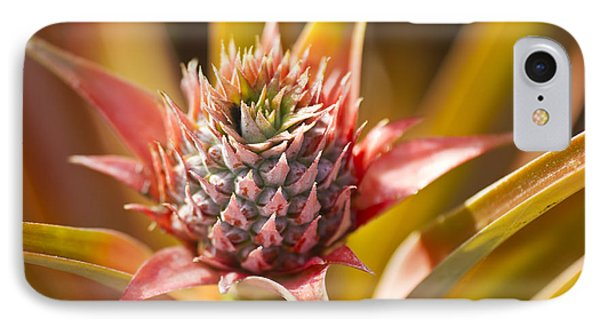 Blooming Pineapple II Phone Case by Ron Dahlquist