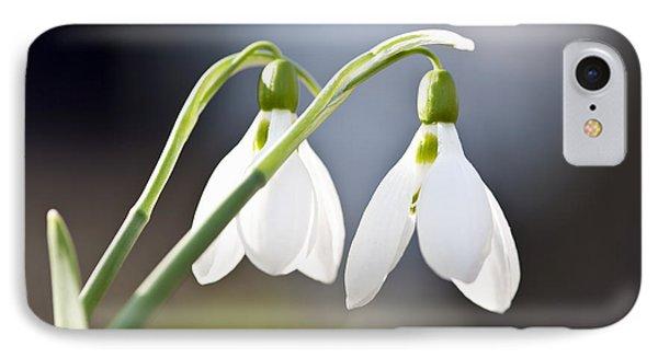 Blooming Snowdrops Phone Case by Elena Elisseeva