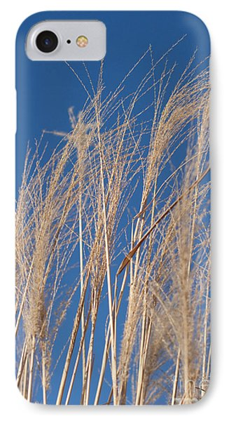 IPhone Case featuring the photograph Blowing In The Wind by Barbara McMahon