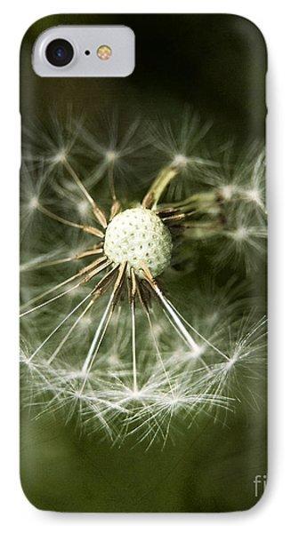 Blown Dandelion IPhone Case by Agnieszka Kubica