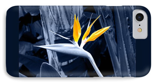 Blue Bird Of Paradise IPhone Case by Rebecca Margraf